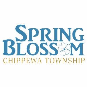 Spring_BlossomBeaver_County,_PA